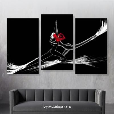 Tablou canvas abstract ABS103