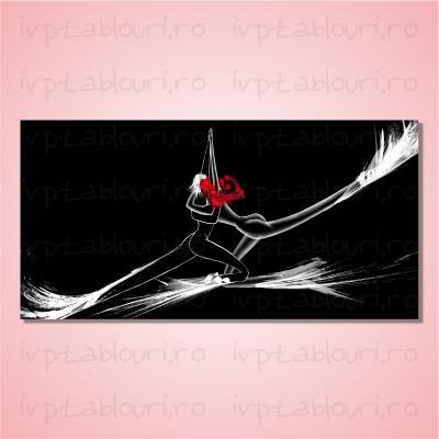 Tablou canvas abstract ABS103-A