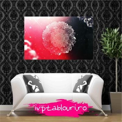 Tablou canvas abstract ABS105