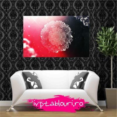 Tablou canvas abstract ABS105