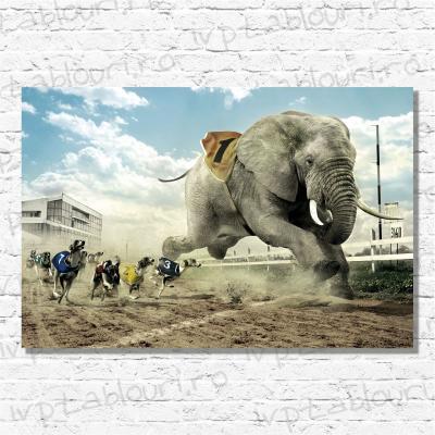 Tablou canvas animale PET101-A