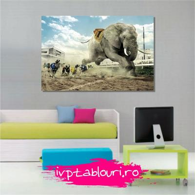 Tablou canvas animale PET101