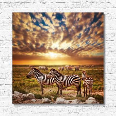 Tablou canvas animale PET104-A