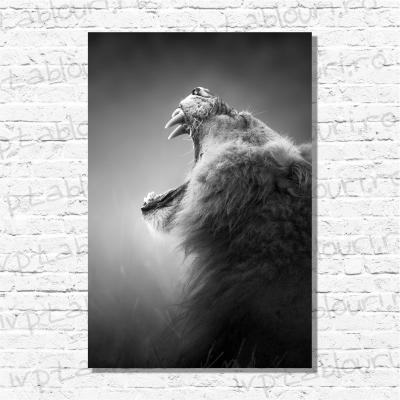 Tablou canvas animale PET106-A