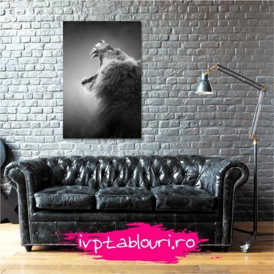 Tablou canvas animale PET106