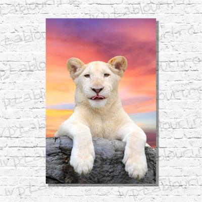 Tablou canvas animale PET107-A