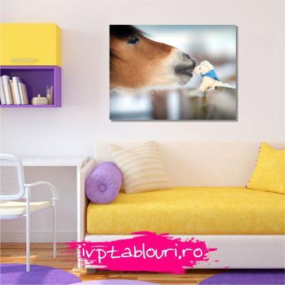 Tablou canvas animale PET110