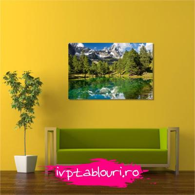 Tablou canvas natura NAT104