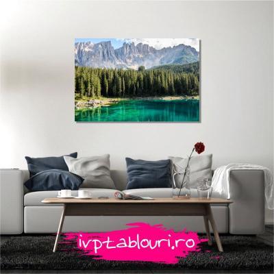 Tablou canvas natura NAT106